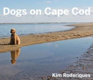 dogsoncapecod
